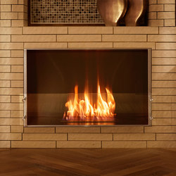 Firebox 800SS | Fireplace inserts | EcoSmart™ Fire