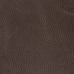 Trinidad Taupe | Colour solid/plain | Montis