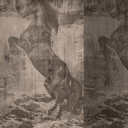 El Caballo de Andy | Wall coverings / wallpapers | Wall&decò