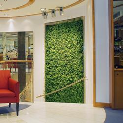 Project - Grüne Wand® | Pflanzenwände | art aqua