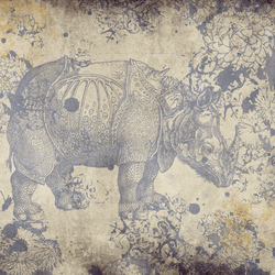 Wunderkammer | Quadri / Murales | Wall&decò