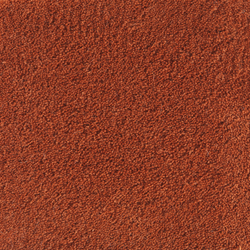 Sencillo Standard coral-35 | Rugs / Designer rugs | Kateha