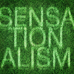Sensationalism | Papeles pintados | Wall&decò