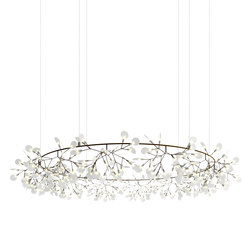 Heracleum The Big O | Suspended lights | moooi
