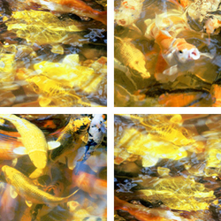 Cool Golden Splash | Synthetic films | tela-design