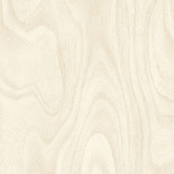 Endless Wood | Vinyl flooring | Vorwerk