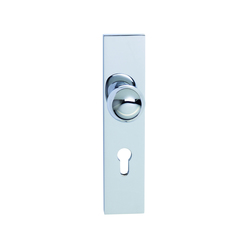 Entrance door fitting | Cerraduras para salidas de emergencia | Tecnoline