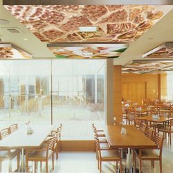 The Orange Salt Of Earth | Acoustic ceiling systems | tela-design