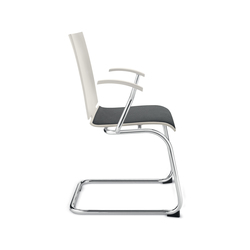 Amico Cantilever chair | Multipurpose chairs | Dauphin