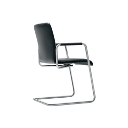 Plenar2 conference flex Cantilever chair | Visitors chairs / Side chairs | Dauphin