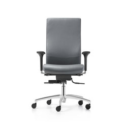 Shape XP Swivel chair | Sillas de oficina | Dauphin