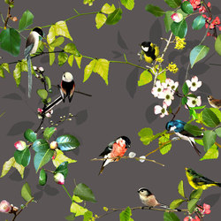 OPHELIA - 82 | Wall coverings / wallpapers | Création Baumann