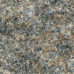 M 738 L-078 | Carpet rolls / Wall-to-wall carpets | Armstrong
