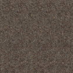Strong 956-164 | Wall-to-wall carpets | Armstrong