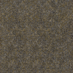 Strong Compact 926-163 | Wall-to-wall carpets | Armstrong