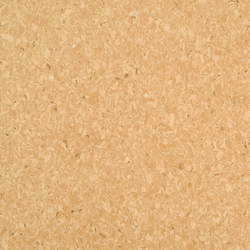 Favorite PUR 726-060 | Plastic flooring | Armstrong