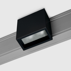 Prologe 80 on-Regule Double | Line voltage track lighting | Kreon