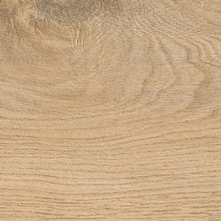 Bio Timber | Oak Patinato Chiaro | Lastre | Lea Ceramiche