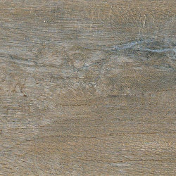 Bio Timber | Oak Provenzale | Slabs | Lea Ceramiche