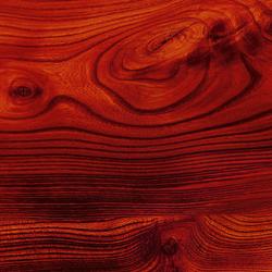 ALUCOBOND® design | Wood | Rubra Ulmus D0003 | Facade cladding | 3A Composites