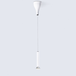 One Eighty Suspension Spot Adjustable | Lampade spot | serien.lighting