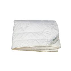 Bambù | Bettdecken / Kopfkissen | Pedano