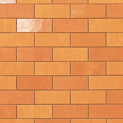 Ewall Orange Minibrick | Ceramic tiles | Atlas Concorde