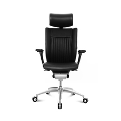 Titan Ltd. S | Management chairs | Wagner