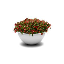 Union Bench Flowerpot | Macetas plantas / Jardineras | Jangir Maddadi Design Bureau