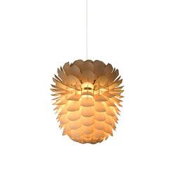 Zappy Small | Iluminación general | SCHNEID