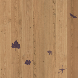 Imprinting 4 | Wood flooring | XILO1934