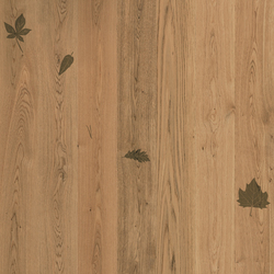 Imprinting 1 | Wood flooring | XILO1934