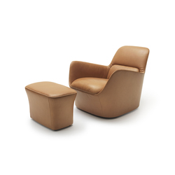 DS 110 | Lounge chairs | de Sede