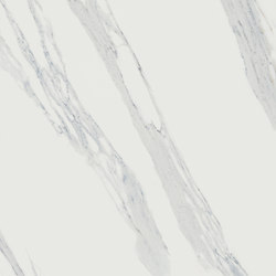 Calacatta Reale JW 02 | Ceramic tiles | Mirage