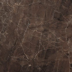 Emperador Selected  JW 05 | Floor tiles | Mirage