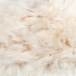 Alpaka Yanku | Rugs | a-carpet