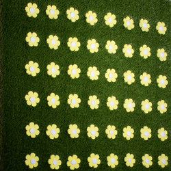 "Meadow flower patch ""linear"" 