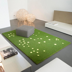 "Meadow flower patch ""wild"" 