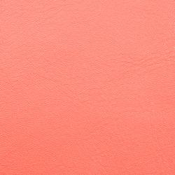 L1010105 | Natural leather | Schauenburg