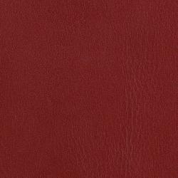 L1010106 | Cuero natural | Schauenburg