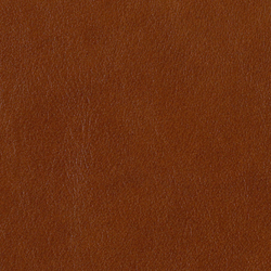 L1010107 | Natural leather | Schauenburg