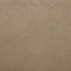 L1010109 | Natural leather | Schauenburg