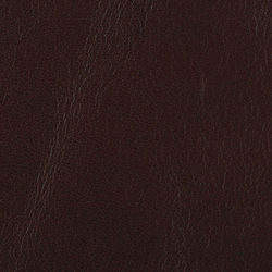 L1010110 | Natural leather | Schauenburg
