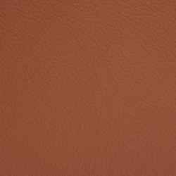 L1020212 | Natural leather | Schauenburg
