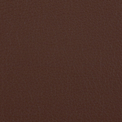 L1020213 | Natural leather | Schauenburg