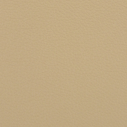 L1020214 | Natural leather | Schauenburg