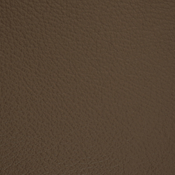 L1020219 | Natural leather | Schauenburg