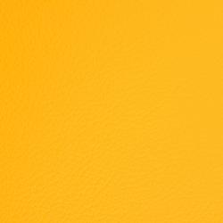 L1020221 | Cuero natural | Schauenburg