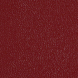 L1020225 | Natural leather | Schauenburg
