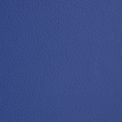 L1020231 | Natural leather | Schauenburg